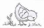 Pecking Easter Chick    per stuk