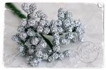 Silvery    per bosje