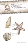 Sea shell kit    per set