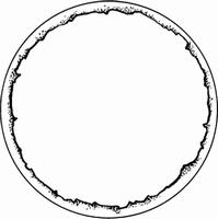Frame -Cirkel    per stuk