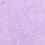 Soft Bilberry    per flesje