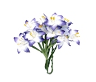 Stemmed Lily White and Blue