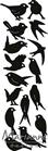 Punch die: Birds    per stuk