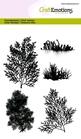 Seaweed    per set