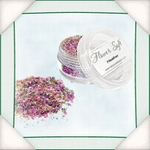 Flower Soft Heather    per potje