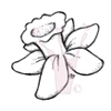 Narcis   per stuk
