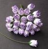 2-tone Lilac   setje van 5
