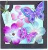 Voorbeeldkaart Bloemen en Vlinders   Niet te koop
