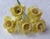 Pale Yellow Daffodil   setje van 5