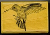 Feeding Hummingbird   per stuk