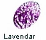 Lavender   per flesje
