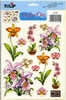 Orchids   per vel