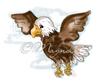 America the Eagle