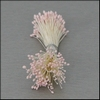 Meeldraden Roze mini  144 stuks