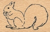 Eekhoorn   per stuk
