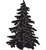 Denneboom / Christmas Tree   per stuk