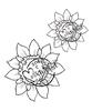 Autumn Sunflowers   per set