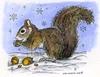 Nora's Winter Squirrel   per stuk