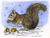 Nora's Winter Squirrel
