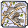 Doug and Nora's Squirrels in notched square