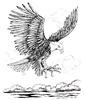 Bald Eagle Landing   per stuk