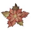 Tattred Poinsettia