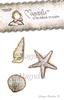 Sea shell kit   per set