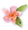 Cattleya Flower   per set