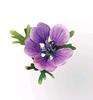 Hardy Geranium Flower