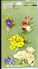 3-D stickers Mixed Bouquet   per vel