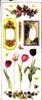 Big Sticker: Berries   per vel
