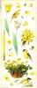 Big Sticker: Naturally Yellow