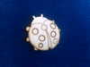 Lieveheersbeestjes 4 cm zakje met 3 stuks. 3mm dik   setje van 3