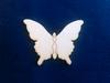 Vlinder   setje van 3