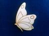 Vlinder zij aanzicht
