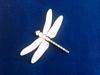 Libelle   setje van 3