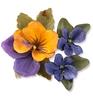 Flower, Pansy / Violet   per set