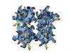 Gardenia 5 cm 2-tones Blue