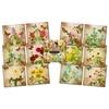Floral Vignettes   per pak
