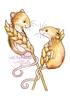 Harvest Mice   per stuk