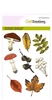 Mushrooms and Leaves