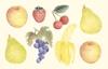 Fruit   per stuk