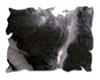 Black Soot   per doosje