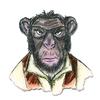 Hipster Chimp   per set