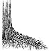 Tree Root   per stuk