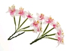 Stemmed Lily Wite and Pink   per set