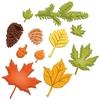 Fall Foliage   per set