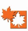 Maple Leaf   per stuk