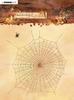 Wonderful Autumn 482 Spiderweb