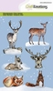 Animals from the forest